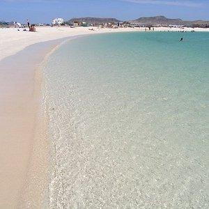 Playa al lado del desierto en Fuerventura