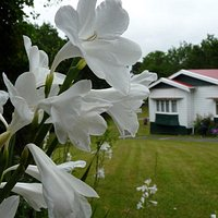 Silverdale Pioneer Village NZ