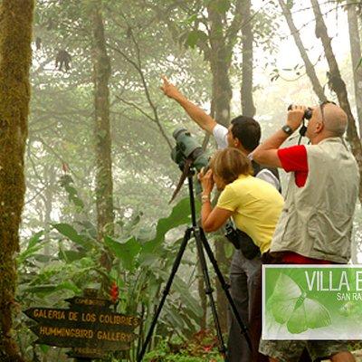 EL SILENCIO CLOUD FOREST GUIDED TOUR