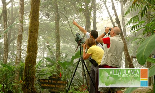 EL SILENCIO CLOUD FOREST GUIDED TOUR