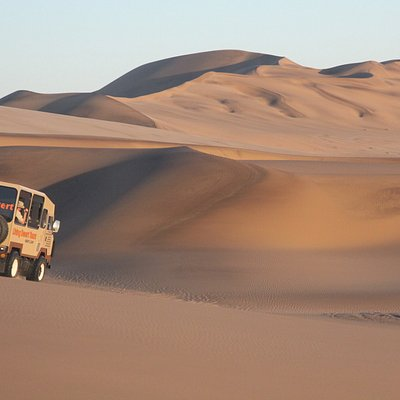 A dune trip with the experts
