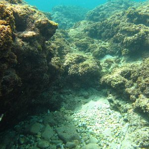 scuba diving in tel aviv