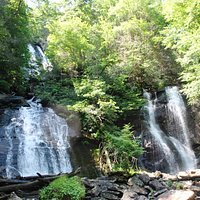 Anna Ruby Falls in late June