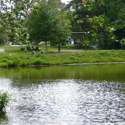 Lake Gerar & park