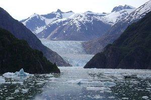 Sawyer Glacier- Tracy Arms Fjord