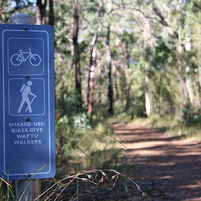 Shared use of the trails