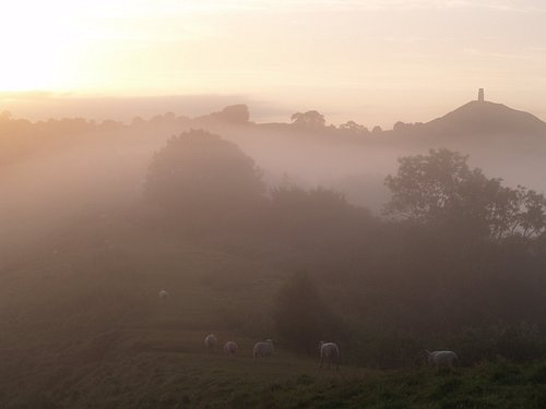View of The Mists of Avalon from Wearyall Hill