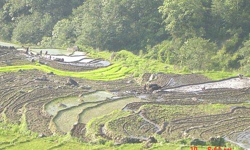 khilang village sikles Nepal Glacier Hotel Pokhara