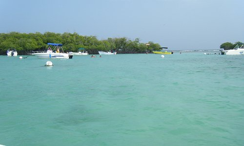 Beautiful clear water and nice sandbars to swim