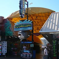 Entrance to Seaport Aquarium on the Wildwood Boardwalk