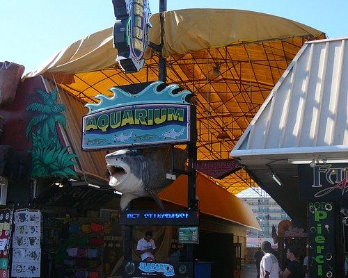 Entrance to Seaport Aquarium on the Wildwood Boardwalk