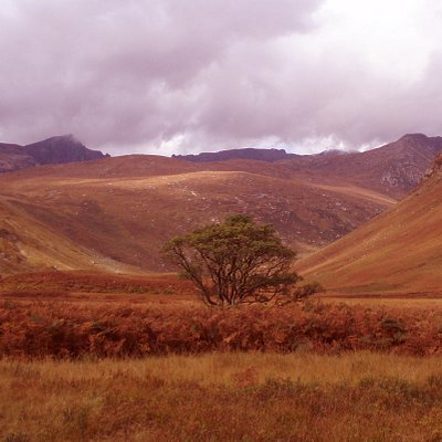 Glen Rosa, one of the main glens on the Isle of Arran