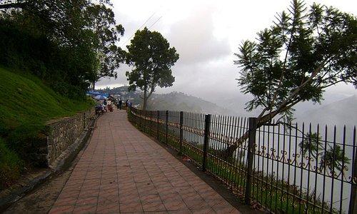 霧がいっぱい