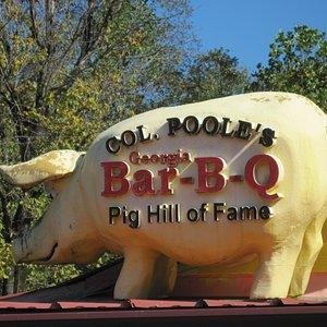 Col. Pooles Pig Hall Of Fame - pig on roof, Ellijay GA