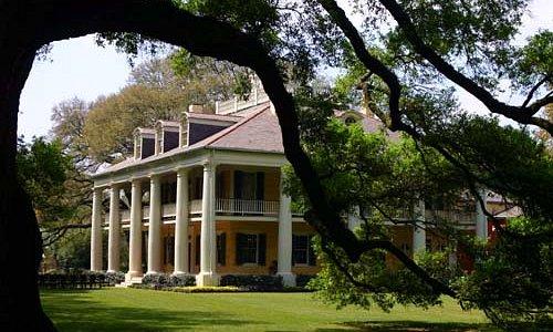 Houmas House .looking throught the Burnside Oak
