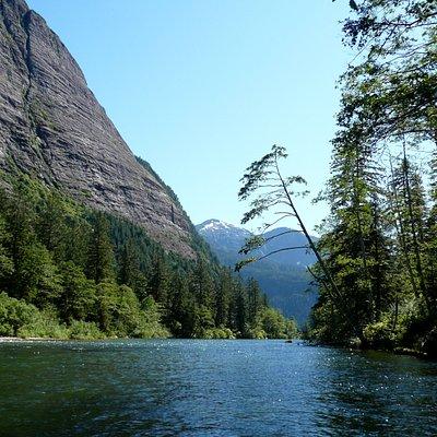 One Great Bear Rainforest destination
