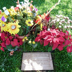 墓石の周りに鮮やかなお花が。
