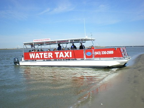 Charter trip to Morris Island