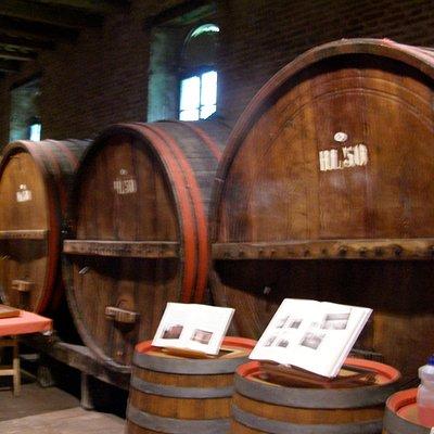 family run wineries