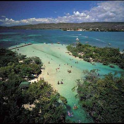 Gilligan's Island, Guanica Dry Forest