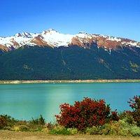 Lago Roca-Ushuaia-planta de Notro.
