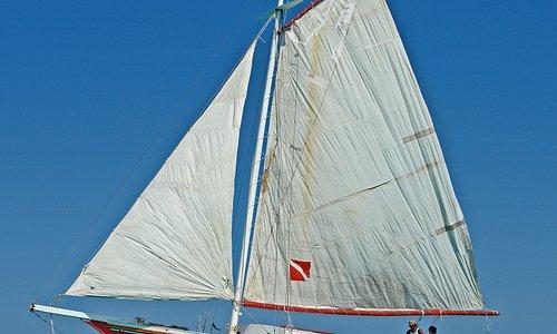 Ragga King Sailing the Beautiful Waters of the Belizean Barrier Reef