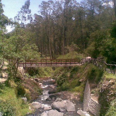 camino cascada peguche