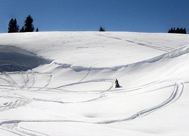 Snowmobile Scenery