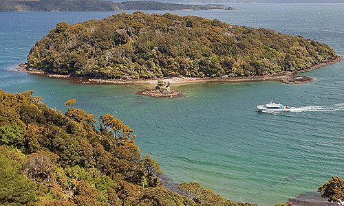 Paterson Inlet Cruises