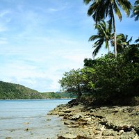 One of the corners of Snake Island.