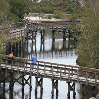 One of the longest bridges at Robinson Preserve
