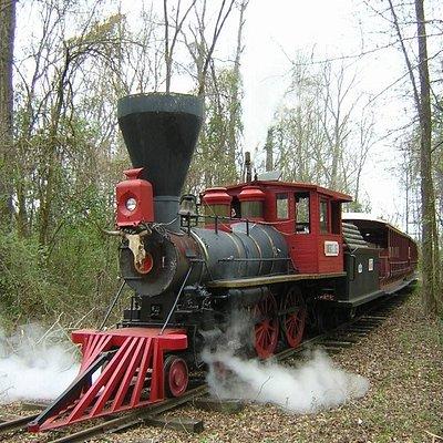 Live Steam train