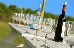 Let the Wine Tasting begin!