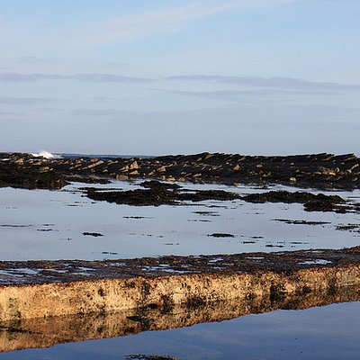 Cuaseway To the Brough Of Birsay