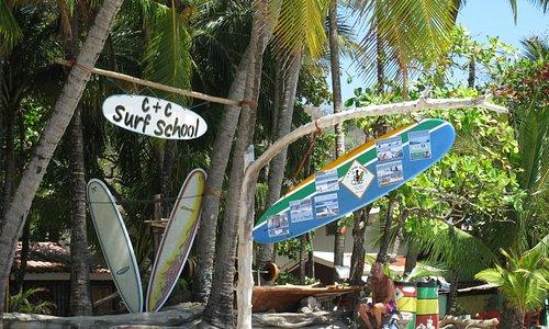 C & C Surf School