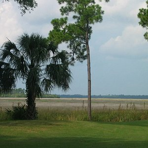 The view from #15 hole, overlooking the salt marsh