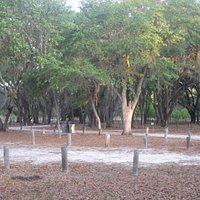 one of the campground site area