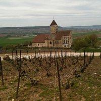 the church near Nathalie's vines
