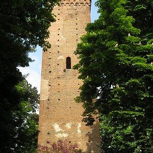 La torre di Novi
