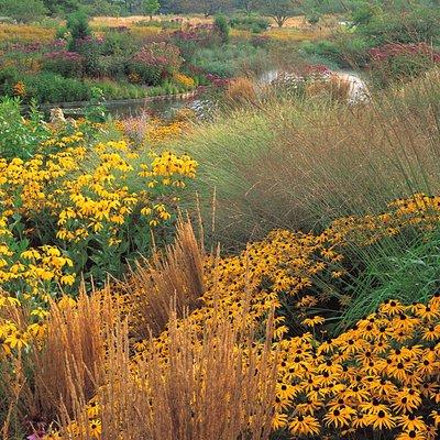 Holden Butterfly Garden at the Holden Arboretum