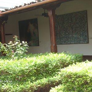Museo garden 1