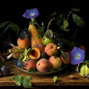 Paulette Tavormina, Peaches and Morning Glories, after G.G., 2010