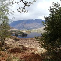 Hiking in Killarney