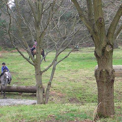 Rudge Riding