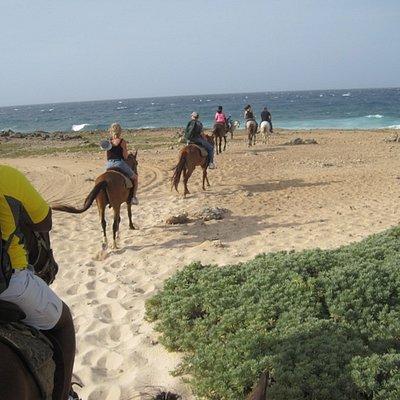 Trail riders arriving at Bushiribana Gold Mill