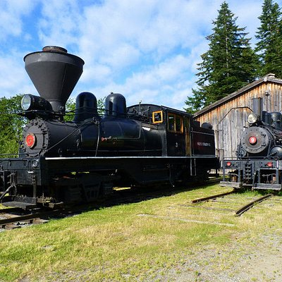 Steam Locies No. 3 and 9 in the logging camp.