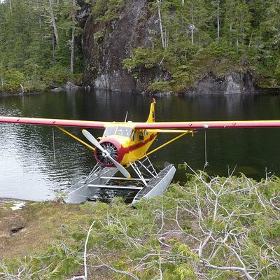 the plane parked by the lake