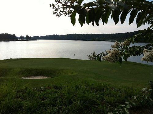 15 green along Allatoona Lake