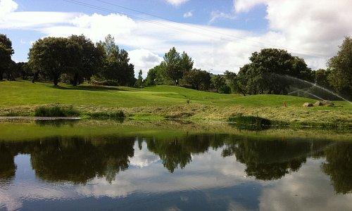 Pitch & Putt ASR Golf