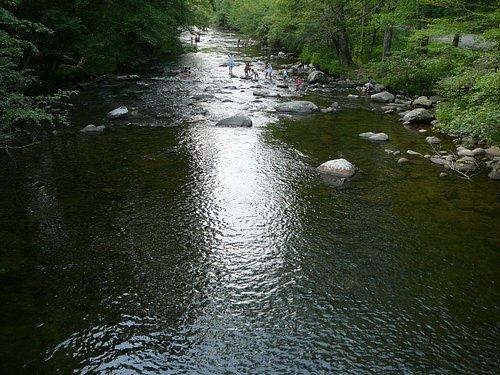 River at Metcalf Bottoms